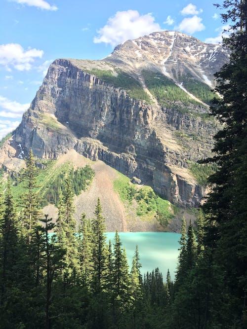 ağaçlar, bulutlar, dağ, dağ doruğu içeren Ücretsiz stok fotoğraf