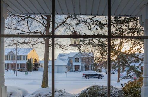 Free stock photo of winter landscape