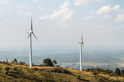 Two Wind Turbines in a Field