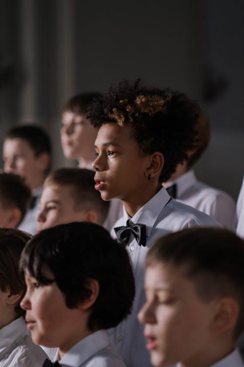 Ingyenes stockfotó afro-amerikai, álló kép, arckép témában