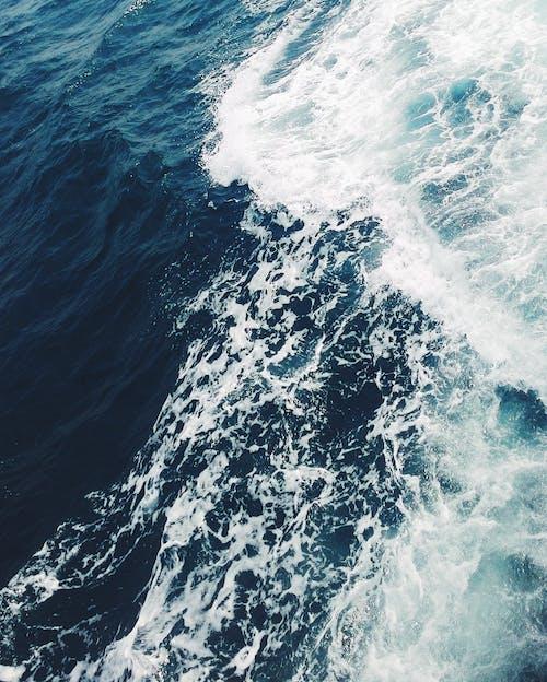 夏天, 夏季, 天氣, 太平洋 的 免費圖庫相片