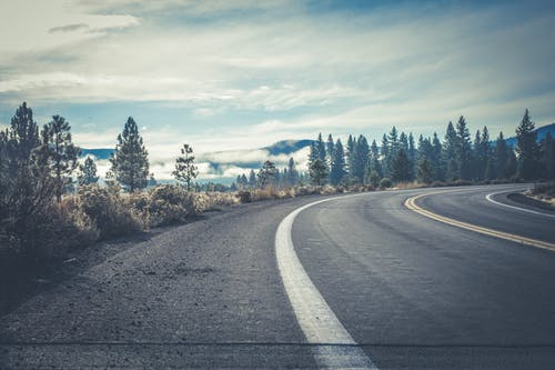 Immagine gratuita di alberi, asfalto, autostrada, boschi