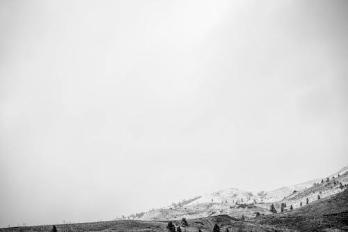 Ilmainen kuvapankkikuva tunnisteilla flunssa, laajakulmavalokuvaus, lumi, luonto