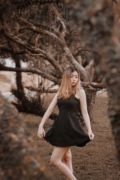 Immagine gratuita di abito, albero, autunno