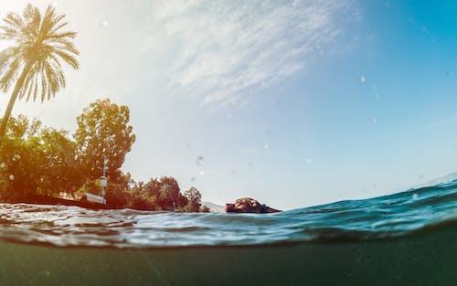 アウトドア, イスラエル, サーフィンの無料の写真素材