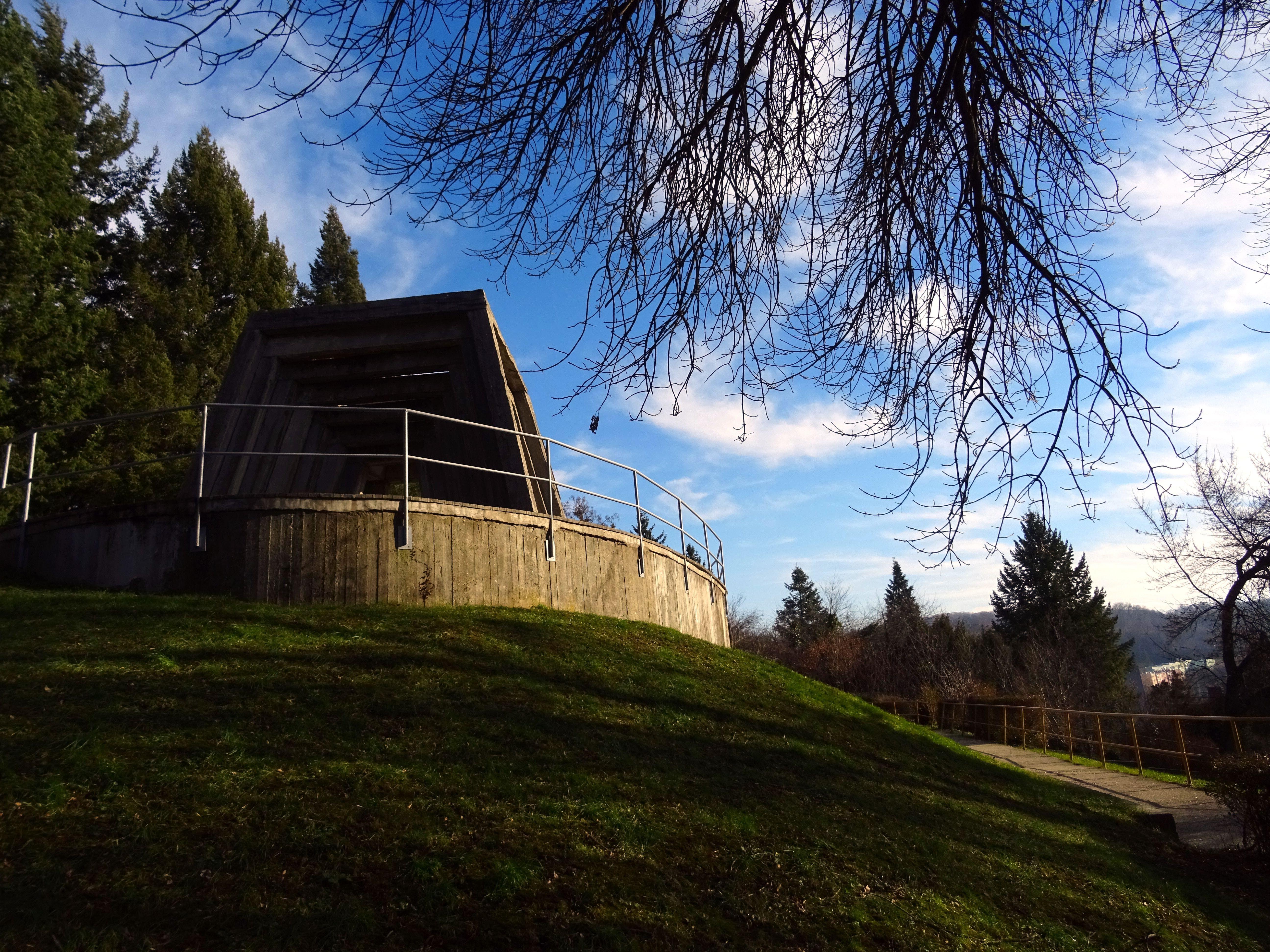 Kostenloses Stock Foto zu architektur, äste, bäume, gras