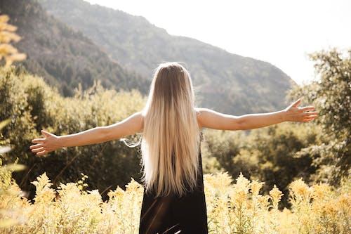 Бесплатное стоковое фото с благополучие, вид сзади, гора, девочка