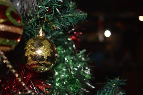 Imagine de stoc gratuită din bolinhas, feliz natal, natal