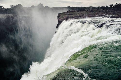Imagine de stoc gratuită din apă, arbori, cascade, flux