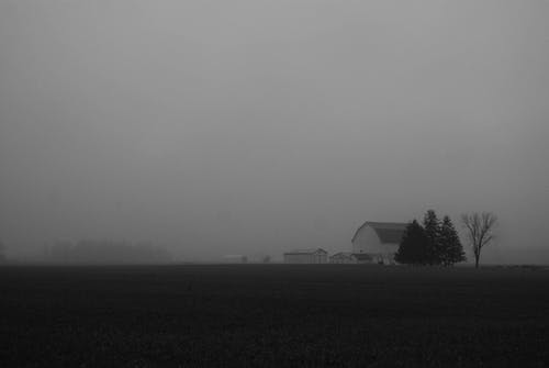 Free stock photo of b&w, barn, black and white, country