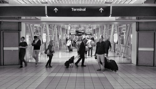 Free stock photo of airport, b&w, black and white, busy