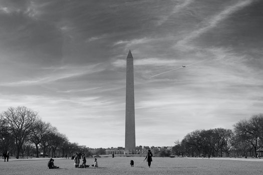 Grayscale Photo of Lincoln Monument