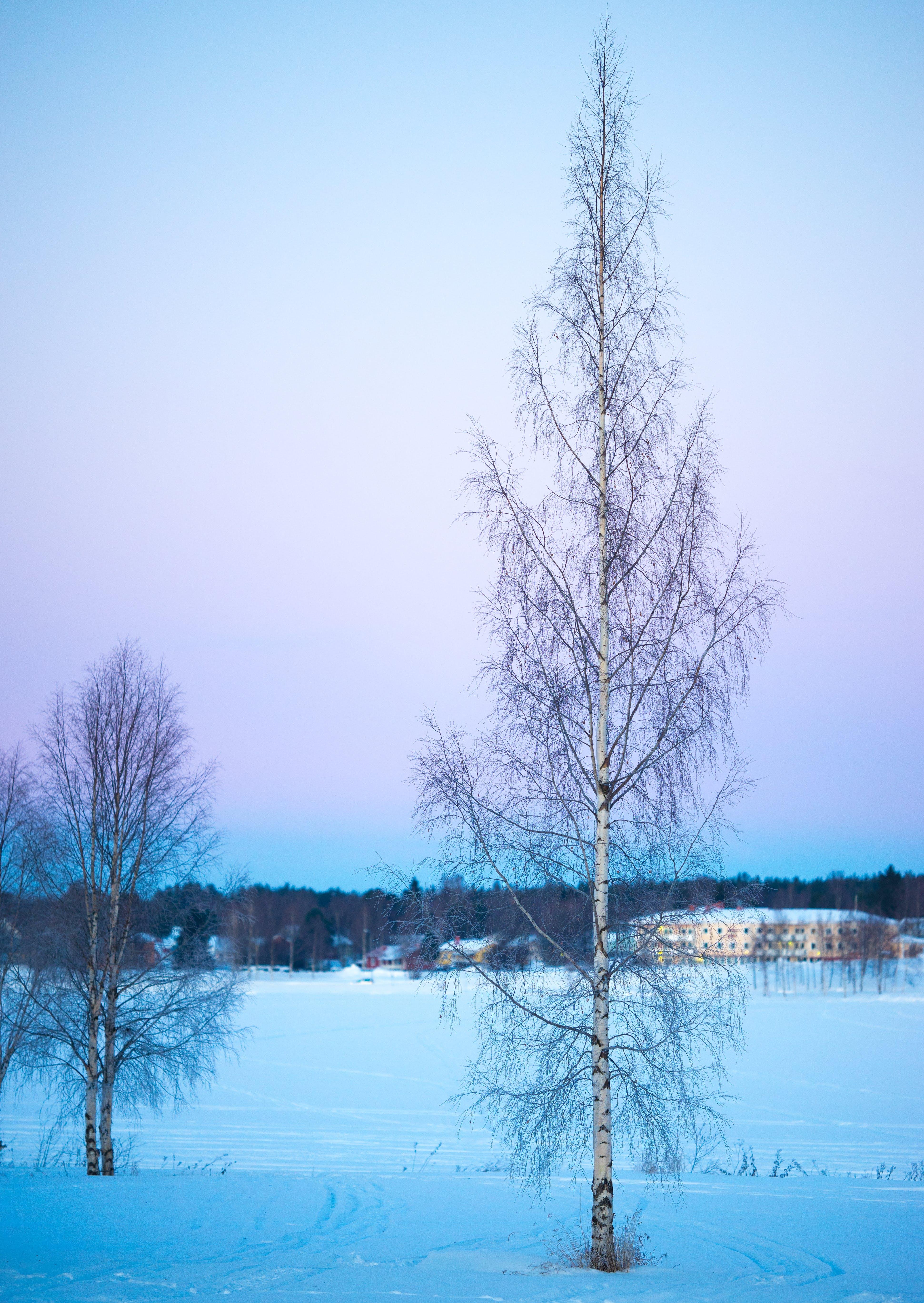 băng, băng giá, bầu trời