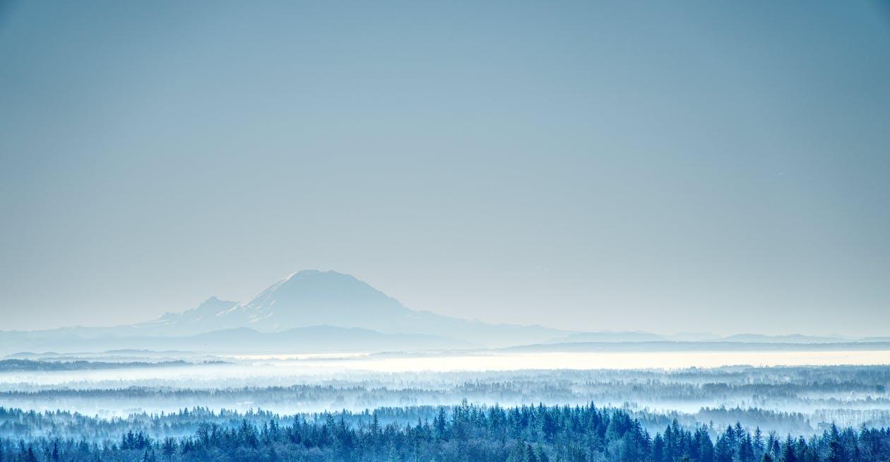 cichy, drzewa, góry