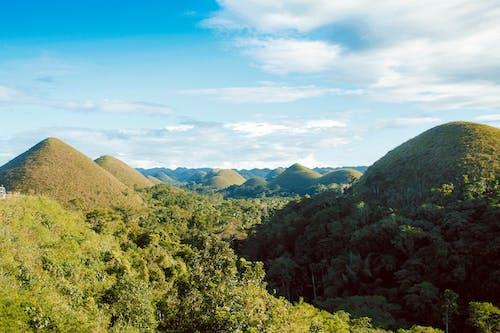 Gratis stockfoto met Azië, berg, blauwe lucht, bomen