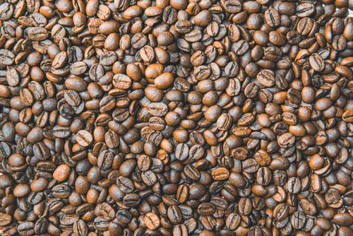 Close-Up Photo of Brown Roasted Coffee Beans