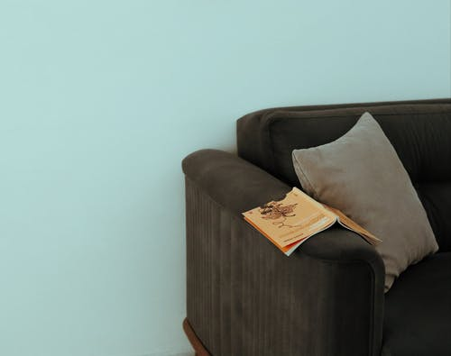 White and Brown Throw Pillow on Brown Sofa