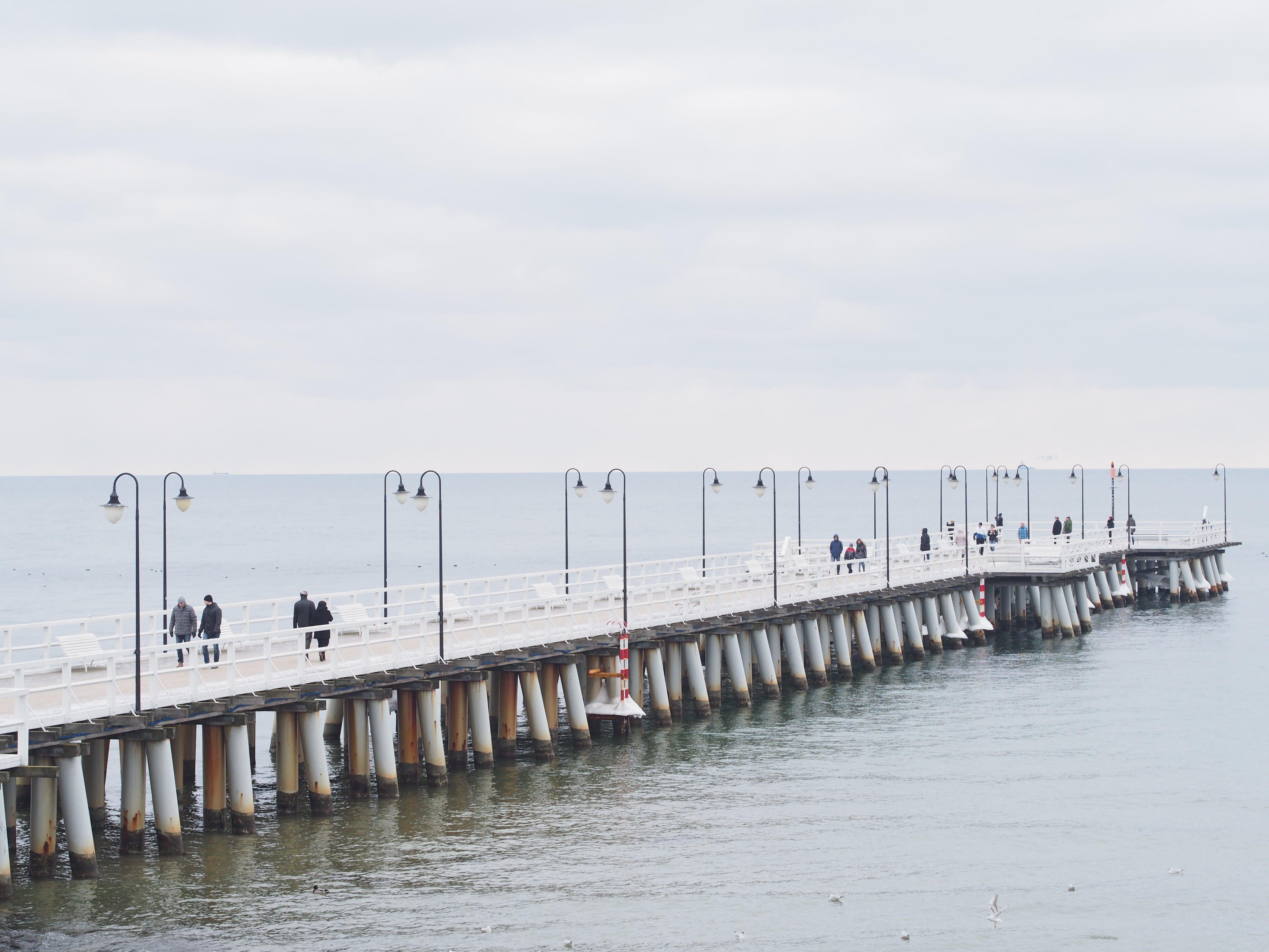 Free stock photo of sea, pier, walk, theme landmarks
