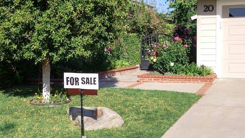 Stop Sign Near Green Grass Lawn