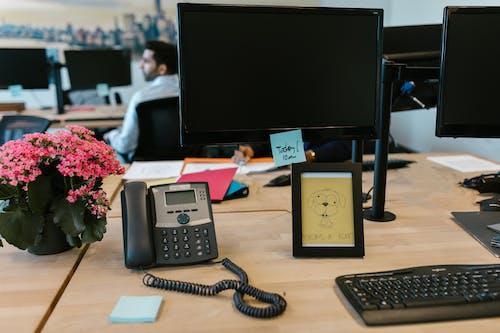 Foto stok gratis bingkai gambar, biro, kantor