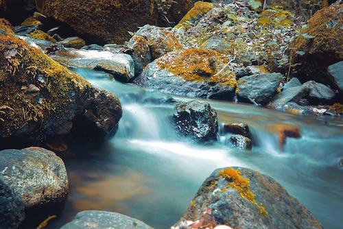 Free stock photo of background 2021, beatiful landscape, canada