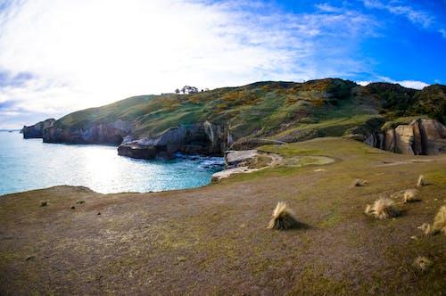 Δωρεάν στοκ φωτογραφιών με dunedin, tunel beach, Νέα Ζηλανδία, παραλία