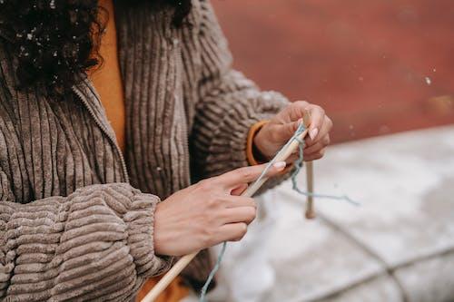 Foto d'estoc gratuïta de acícula, afició, agulla