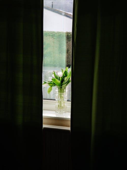 Green Curtain Near White Window