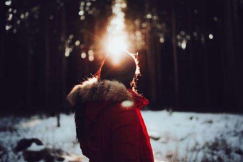 Foto stok gratis dingin, gelap, jaket musim dingin, lansekap