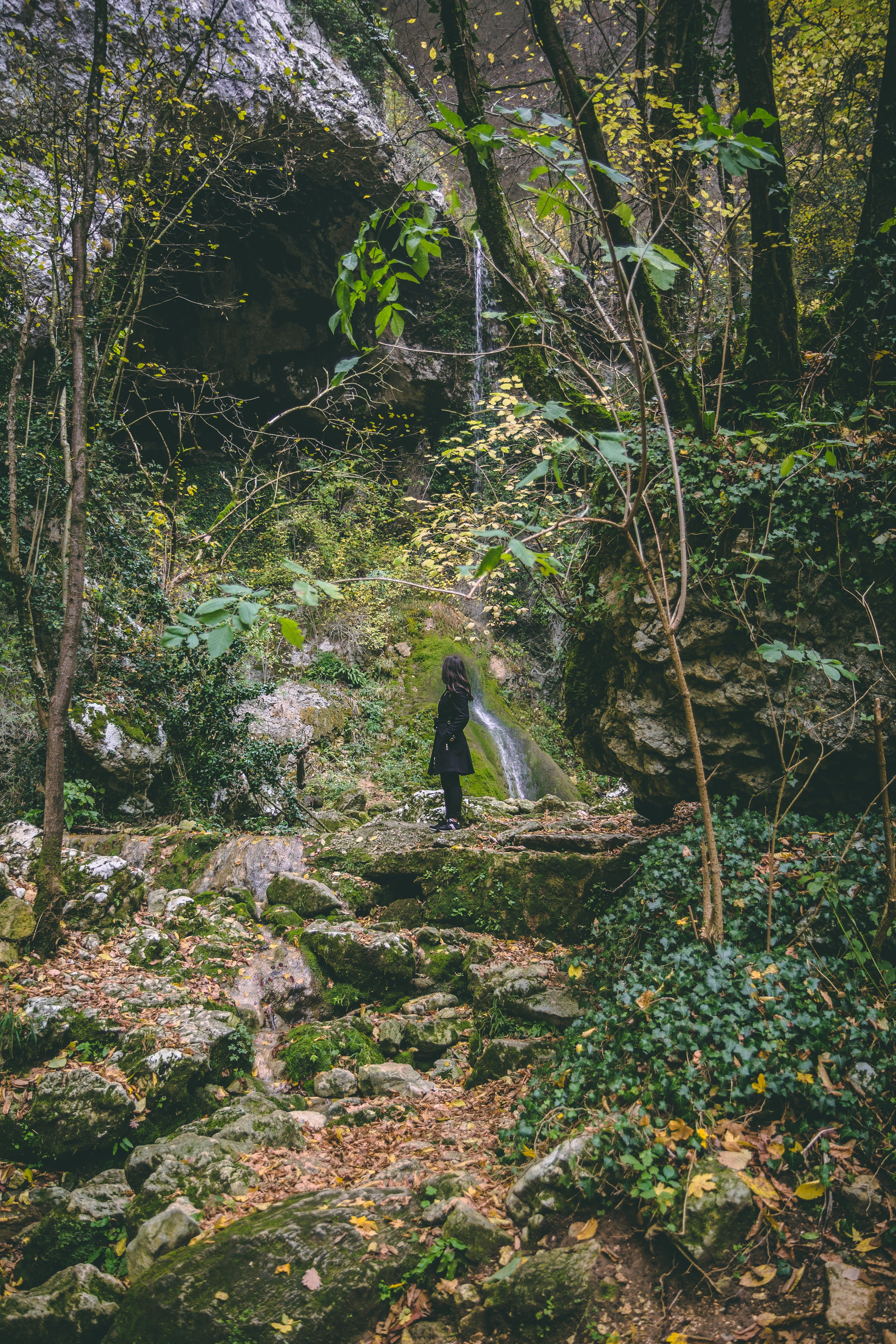 Woman Wearing Black Trench Coat in the Forest