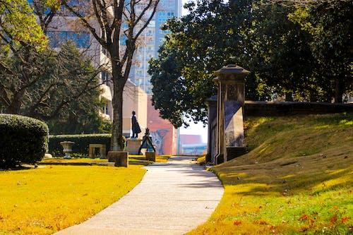 Fotobanka sbezplatnými fotkami na tému architektúra, buš, chodník, čiara