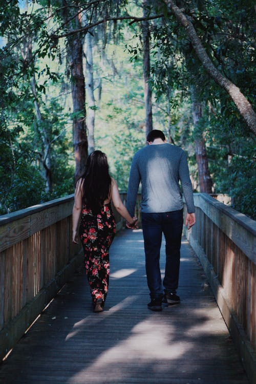 Free stock photo of couple, engagement, forest, love