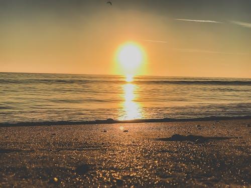 Gratis lagerfoto af bølger, farverig, fredelig, hav