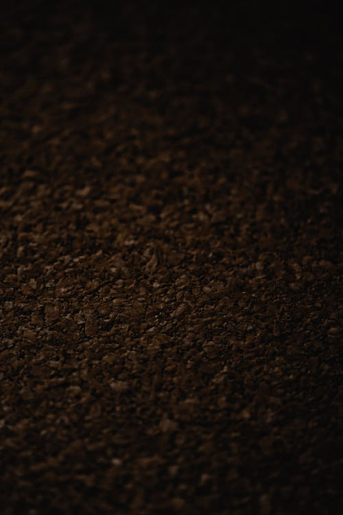 Free stock photo of abstract, bean, blur