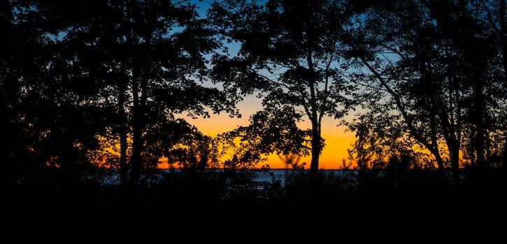 Free stock photo of landscape, sunset, contrast