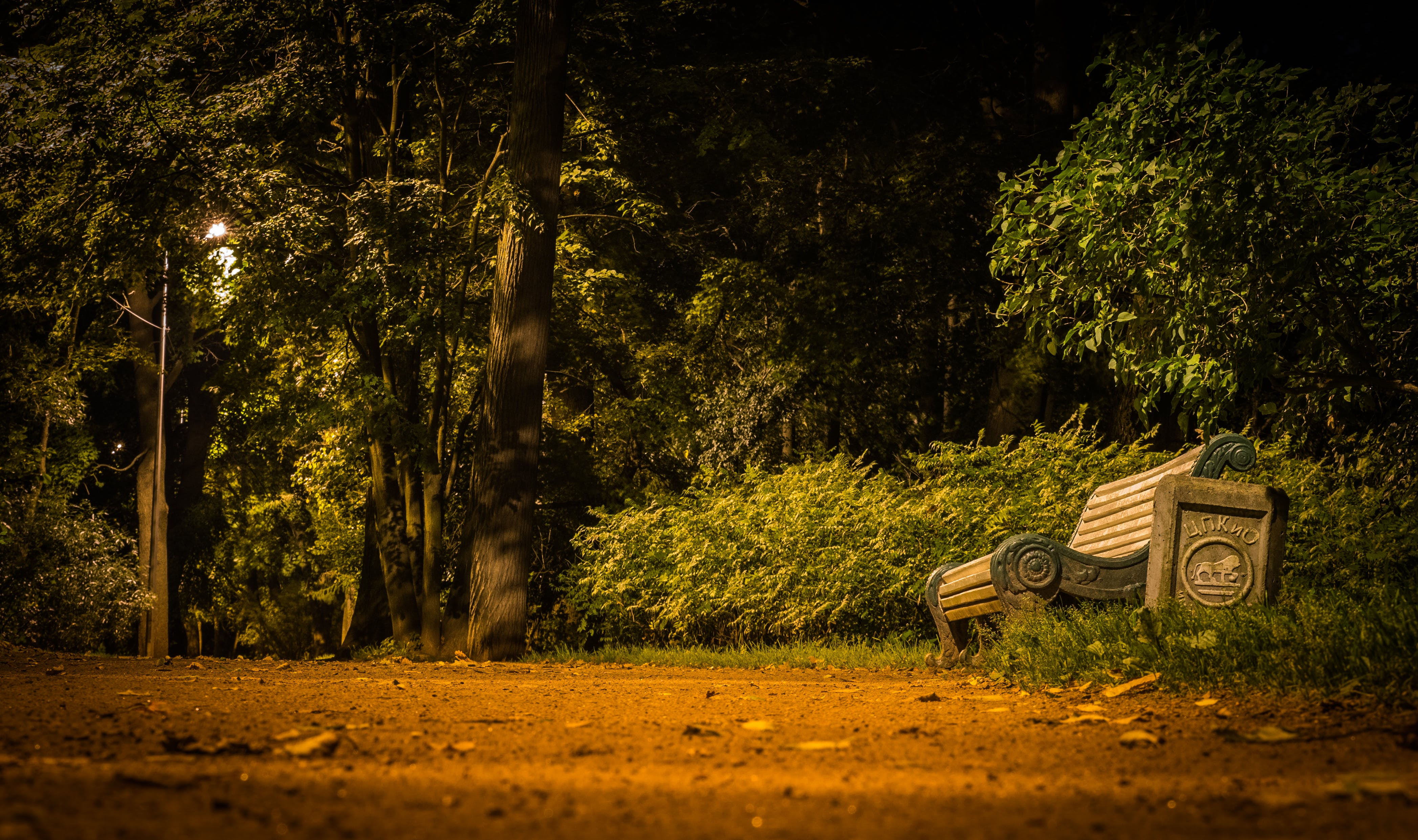 Free stock photo of bench, landscape, trash can