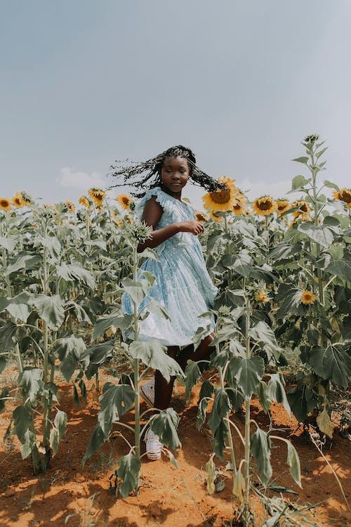 Безкоштовне стокове фото на тему «афро-американських дівчина, безтурботний, ботаніка»