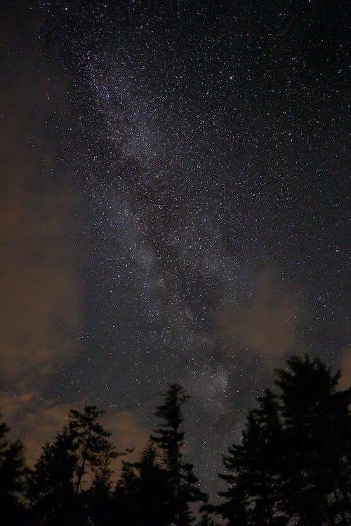 Fotobanka sbezplatnými fotkami na tému celebrity, hviezdna obloha, noc, obloha