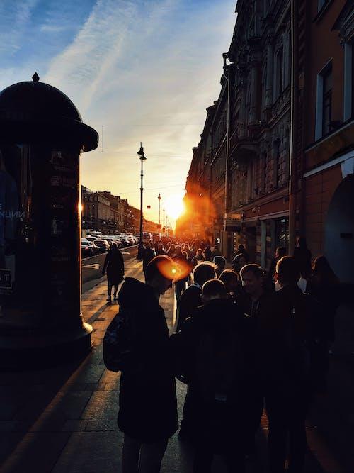 Foto d'estoc gratuïta de arquitectura, avinguda, capvespre