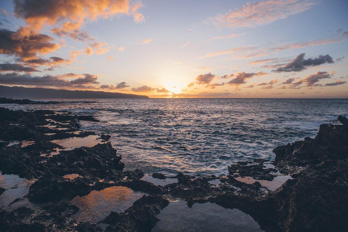 oceanshore, ακτή, ακτή του ωκεανού