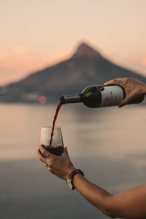 Free stock photo of alcohol, bottle, bottle of wine