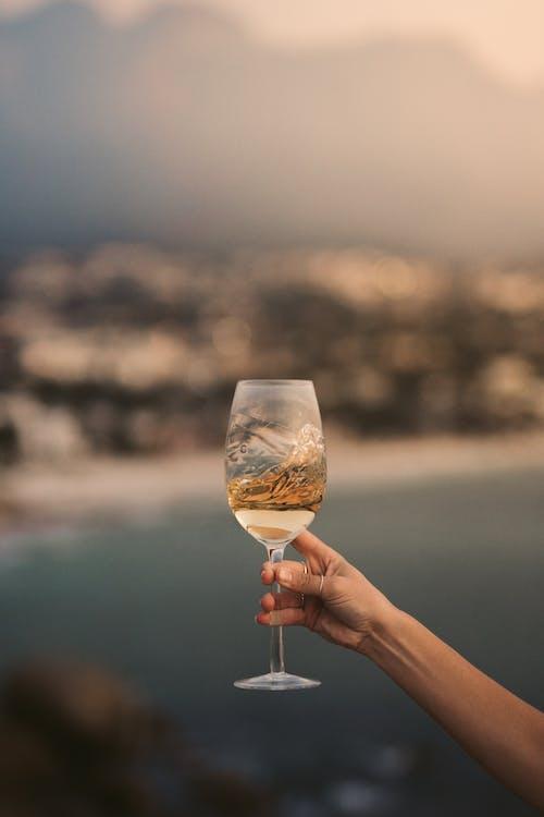 Fotos de stock gratuitas de al aire libre, brindis, celebrar