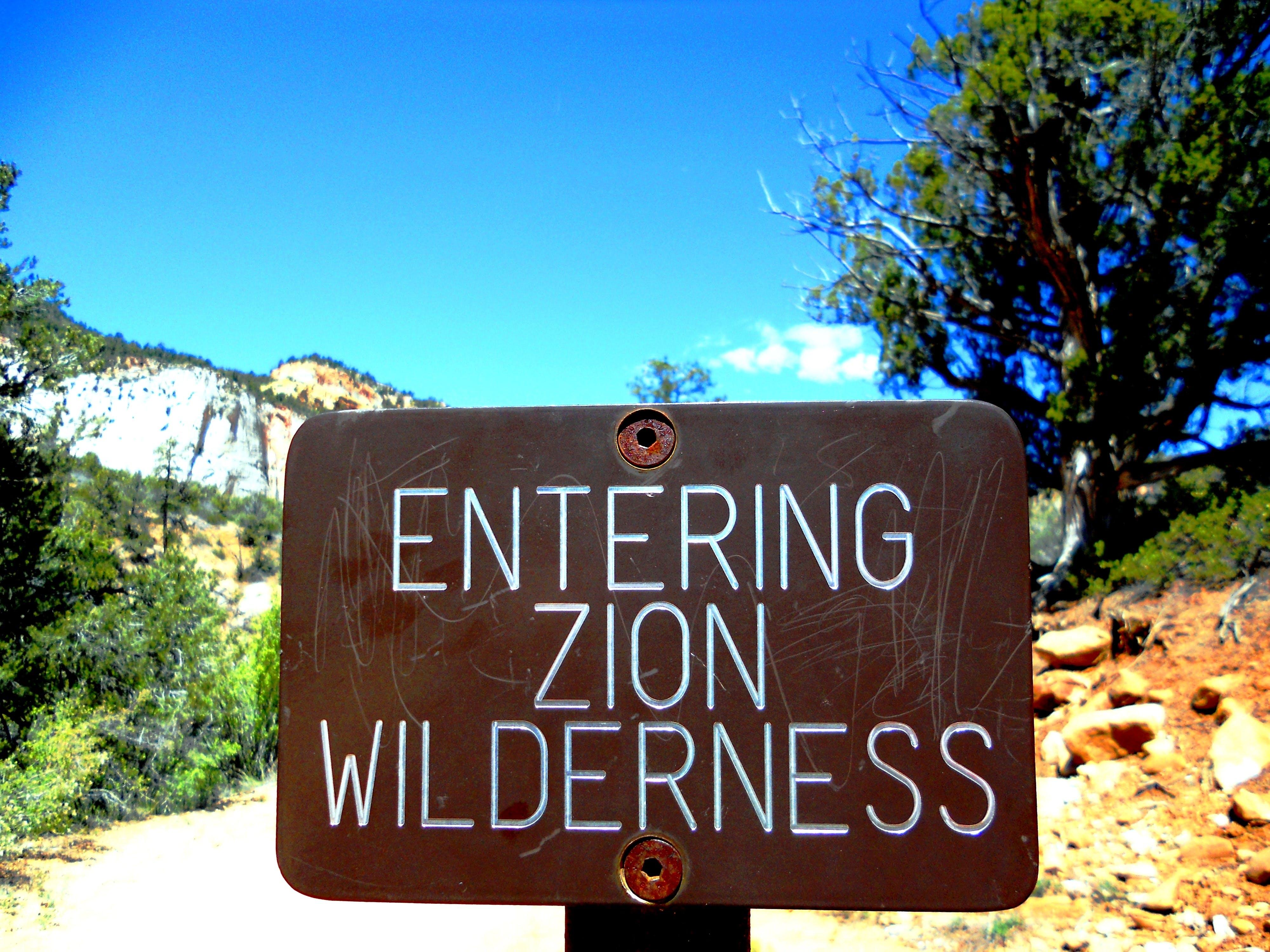 Free stock photo of Joe Leineweber, Zion National Park