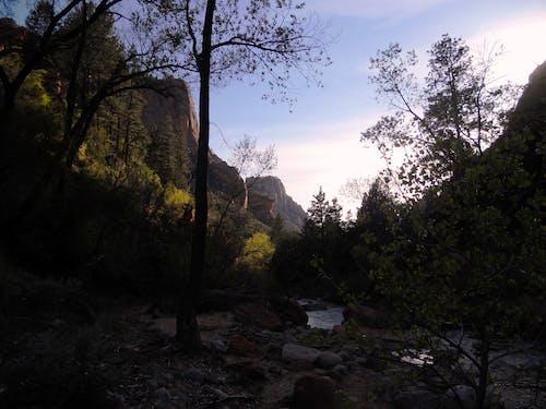 Free stock photo of Joe Leineweber, Trans-Zion, Zion National Park