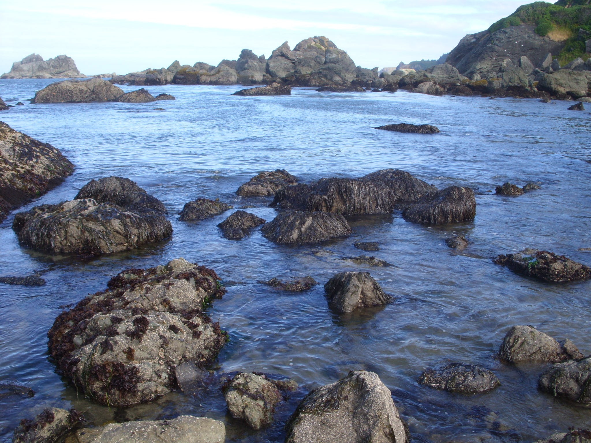 Free stock photo of Harris Beach, Joe Leineweber, oregon coast