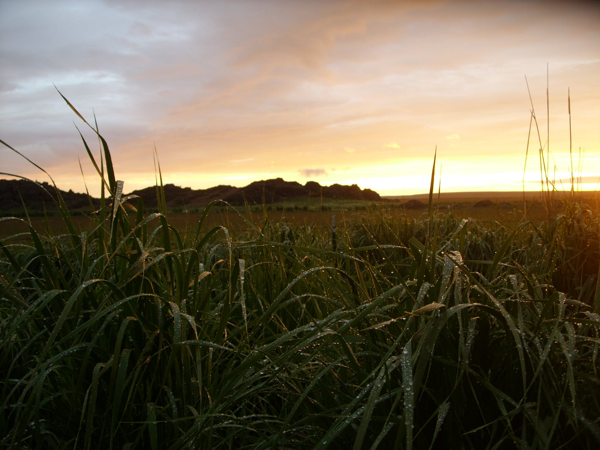 Free stock photo of Eastern Oregon, Joe Leineweber, Jordan Valley, Rural sunset