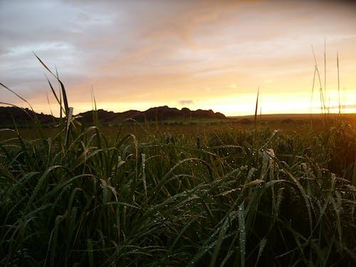 Fotobanka sbezplatnými fotkami na tému joe leineweber, jordan valley, vidiecky západ slnka, východný oregon