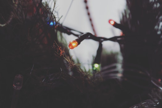 Close-Up Photography of Christmas Lights