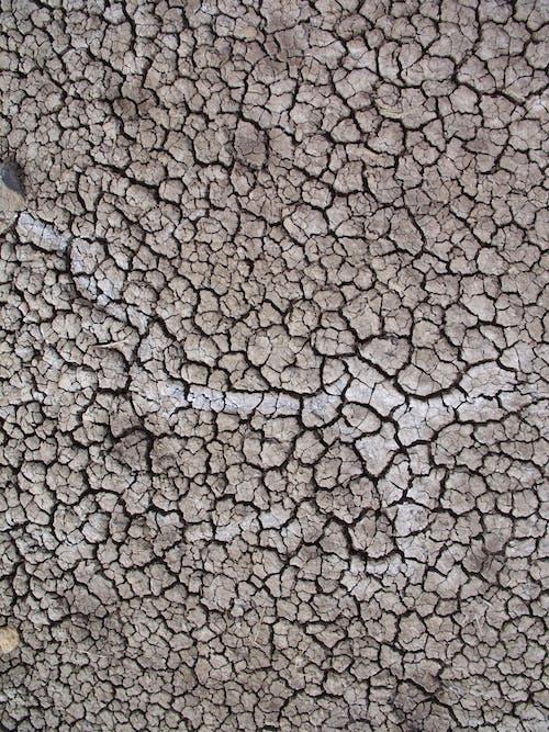 Free stock photo of Alvord Desert