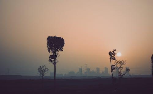 Free stock photo of city, city travel, fade